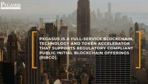 Pegasusfintech banner 300x171 - Pegasusfintech banner