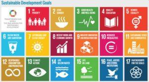UN SDGs 300x166 - UN SDGs