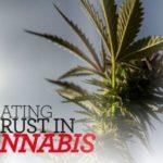 Creating trust in Cannabis 150x150 - Cannabis & blockchain: Bad romance or a perfect match?