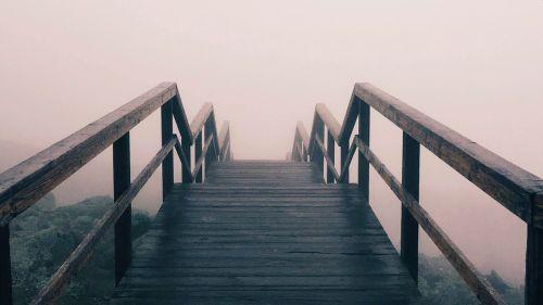 fintech bridges - Are the fintech bridges working?