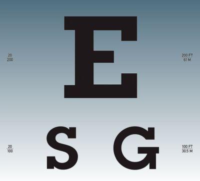 ESG Risk and impact - ESG Risk Comes Into Focus Companies focus on their ESG risks to build profitability for the long term.
