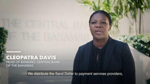 Bahamas Sand Dollar - Video Library